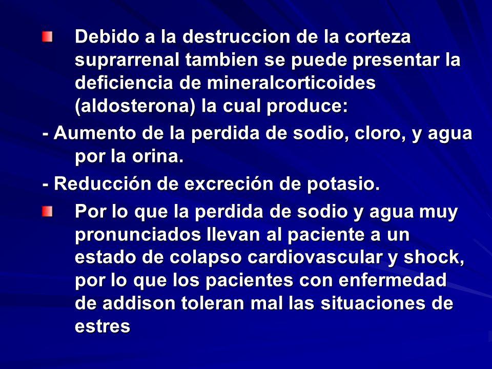 Debido a la destruccion de la corteza suprarrenal tambien se puede presentar la deficiencia de mineralcorticoides (aldosterona) la cual produce: