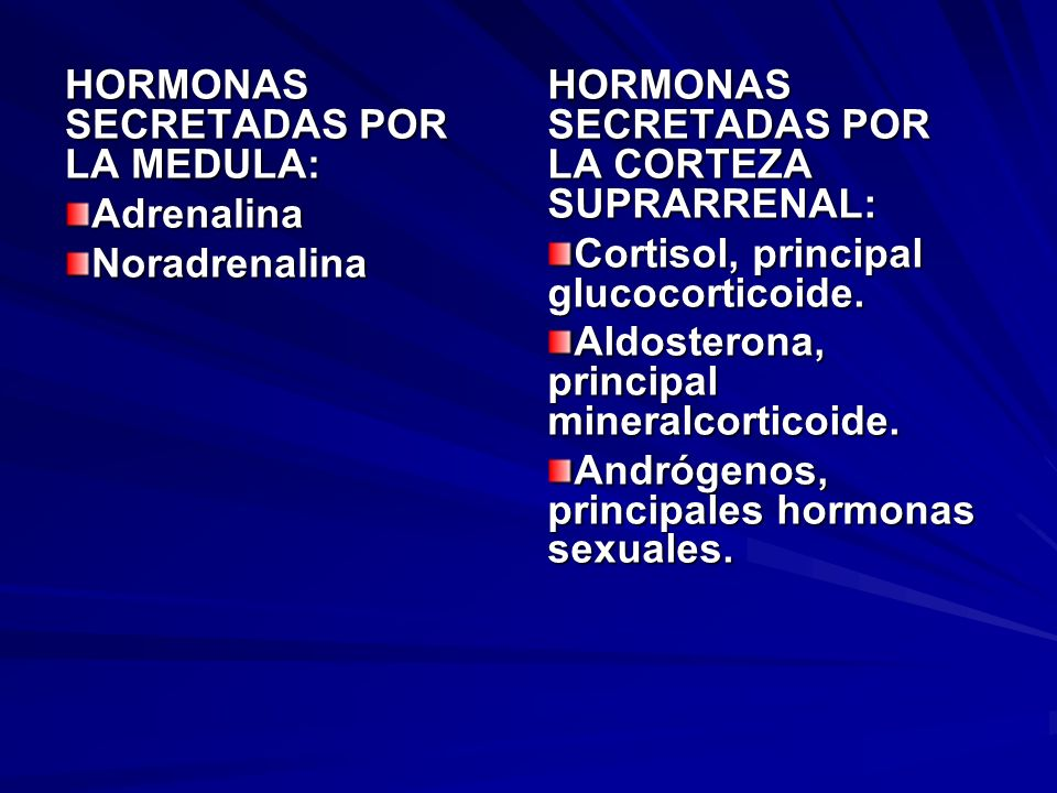 HORMONAS SECRETADAS POR LA MEDULA: