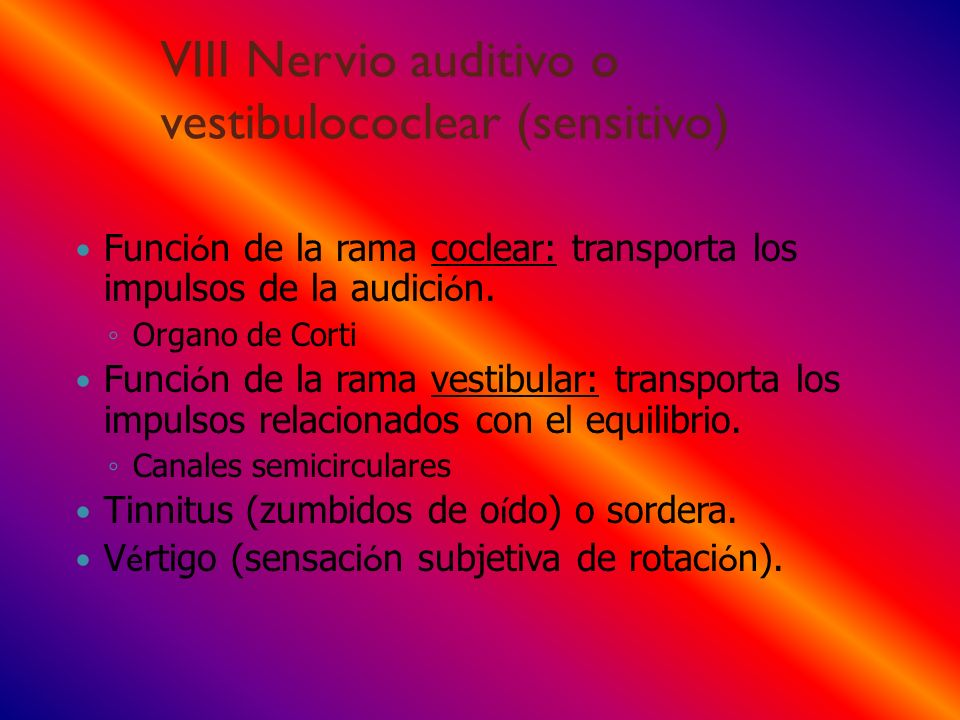 VIII Nervio auditivo o vestibulococlear (sensitivo)