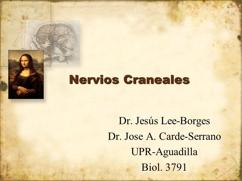 Dr. Jose A. Carde-Serrano
