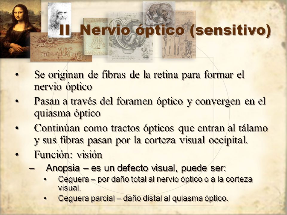 II Nervio óptico (sensitivo)