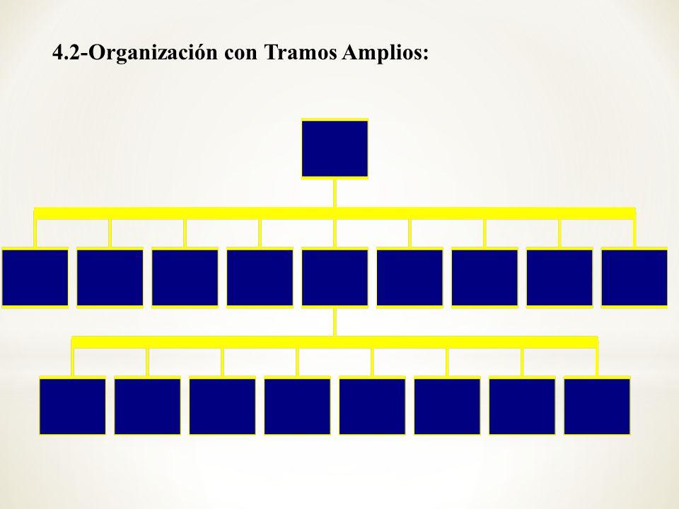 4.2-Organización con Tramos Amplios: