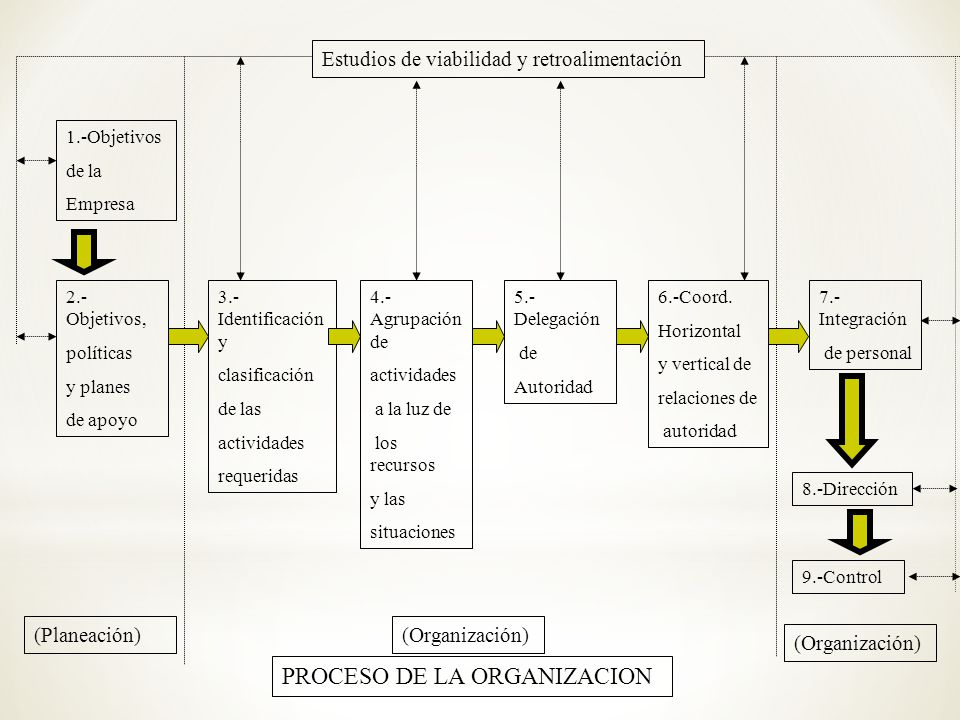 PROCESO DE LA ORGANIZACION