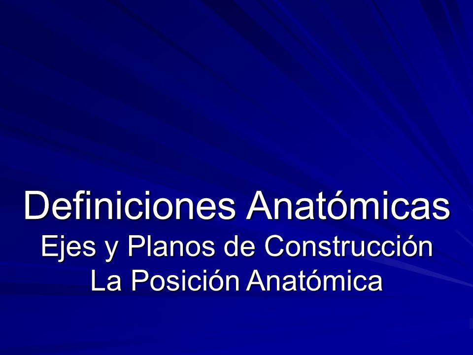 Definiciones Anatómicas Ejes y Planos de Construcción