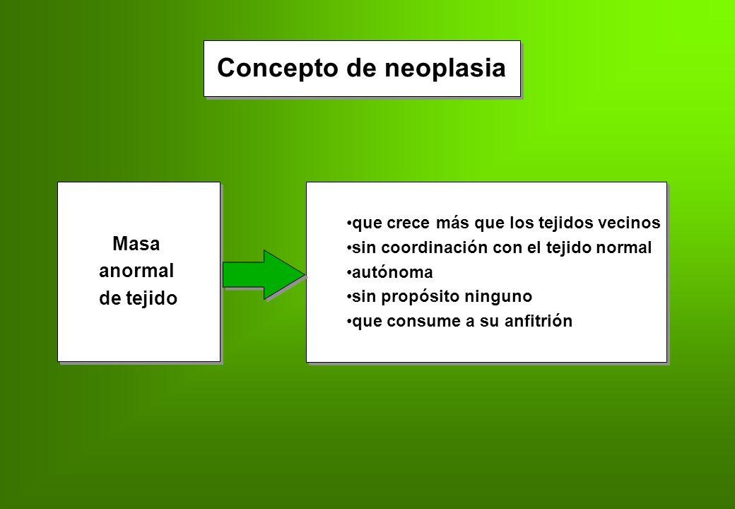 Concepto de neoplasia Masa anormal de tejido