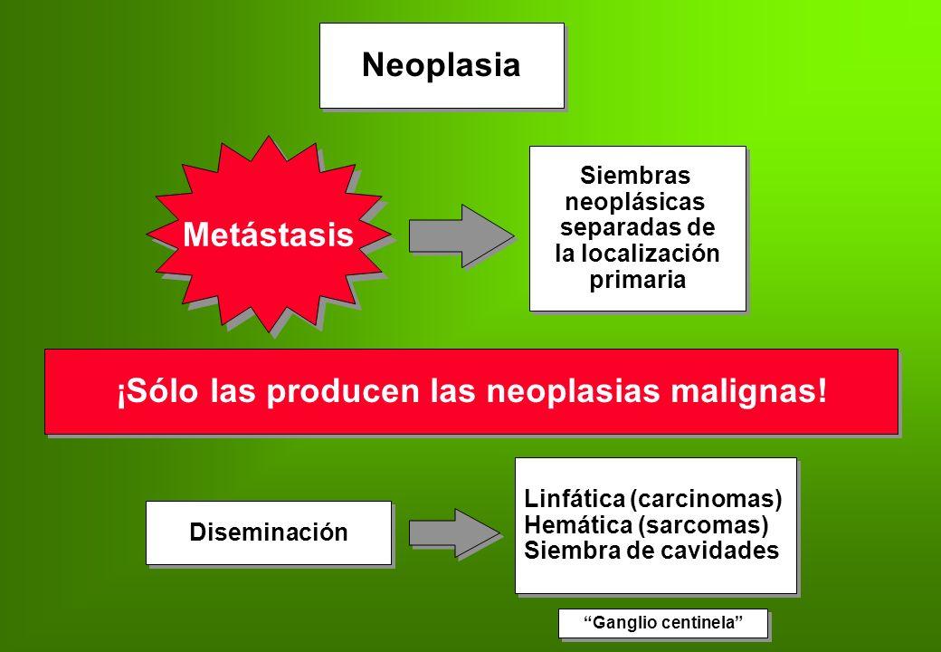 ¡Sólo las producen las neoplasias malignas!