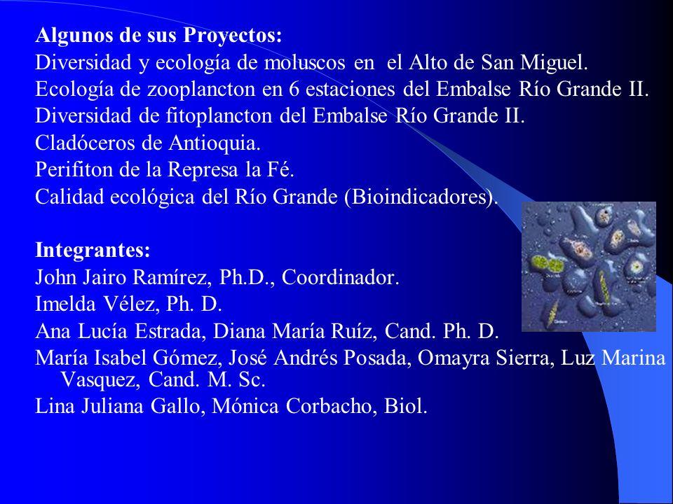 Algunos de sus Proyectos: