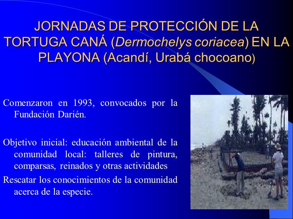 JORNADAS DE PROTECCIÓN DE LA TORTUGA CANÁ (Dermochelys coriacea) EN LA PLAYONA (Acandí, Urabá chocoano)