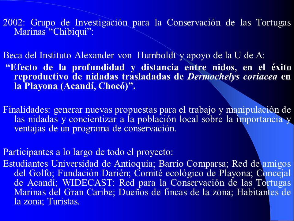 2002: Grupo de Investigación para la Conservación de las Tortugas Marinas Chibiquí :