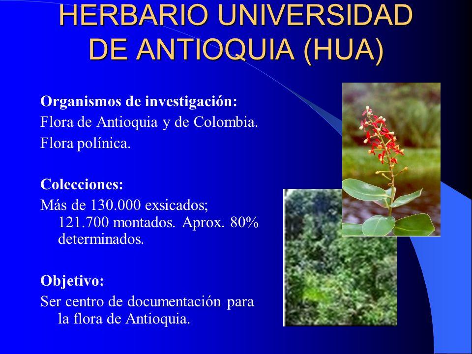 HERBARIO UNIVERSIDAD DE ANTIOQUIA (HUA)