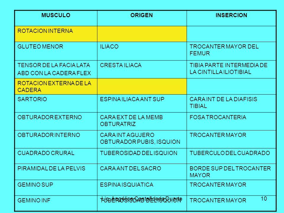 Lic. Angélica Castañdeda Duarte