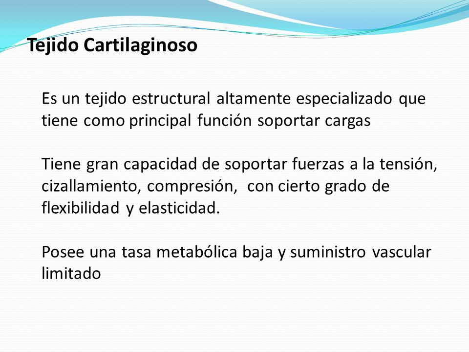 Tejido CartilaginosoEs un tejido estructural altamente especializado que tiene como principal función soportar cargas.
