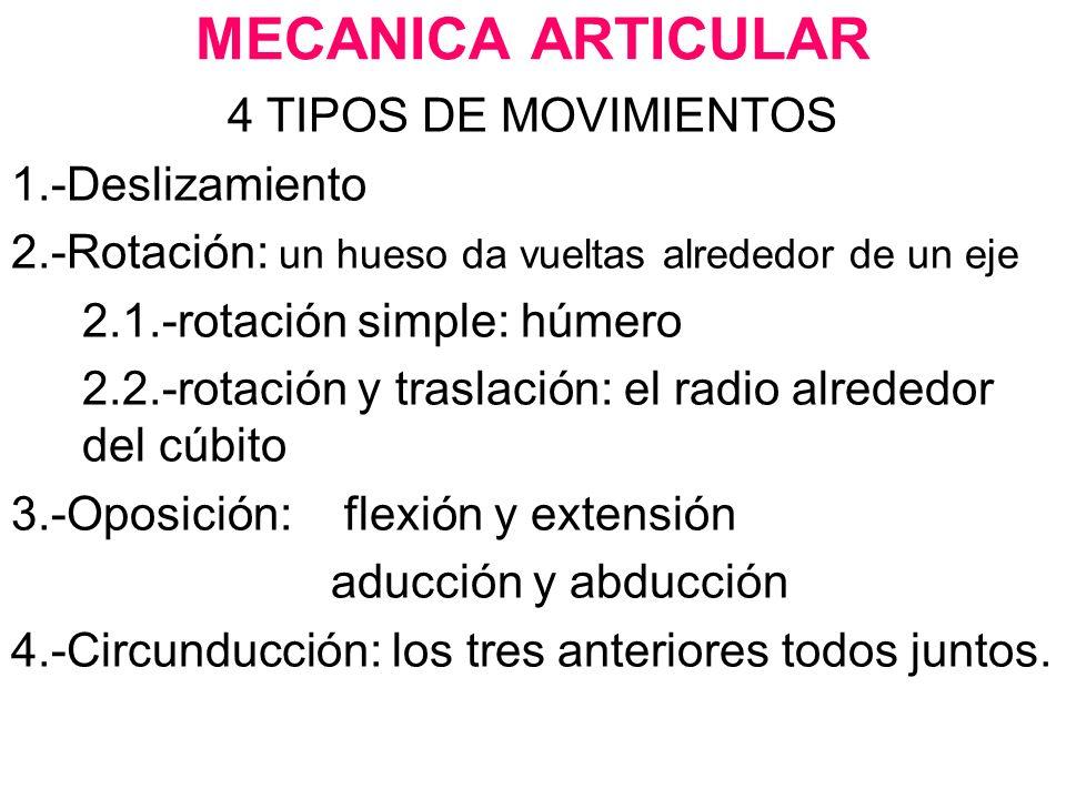 MECANICA ARTICULAR 4 TIPOS DE MOVIMIENTOS 1.-Deslizamiento