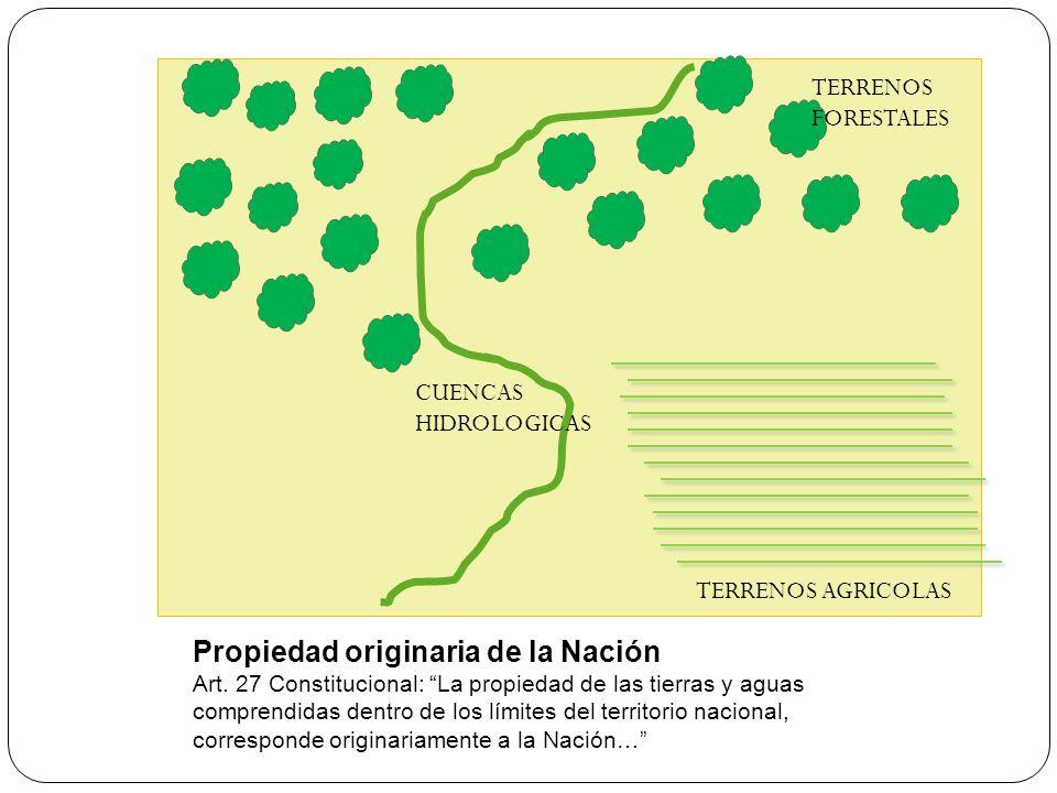Propiedad originaria de la Nación