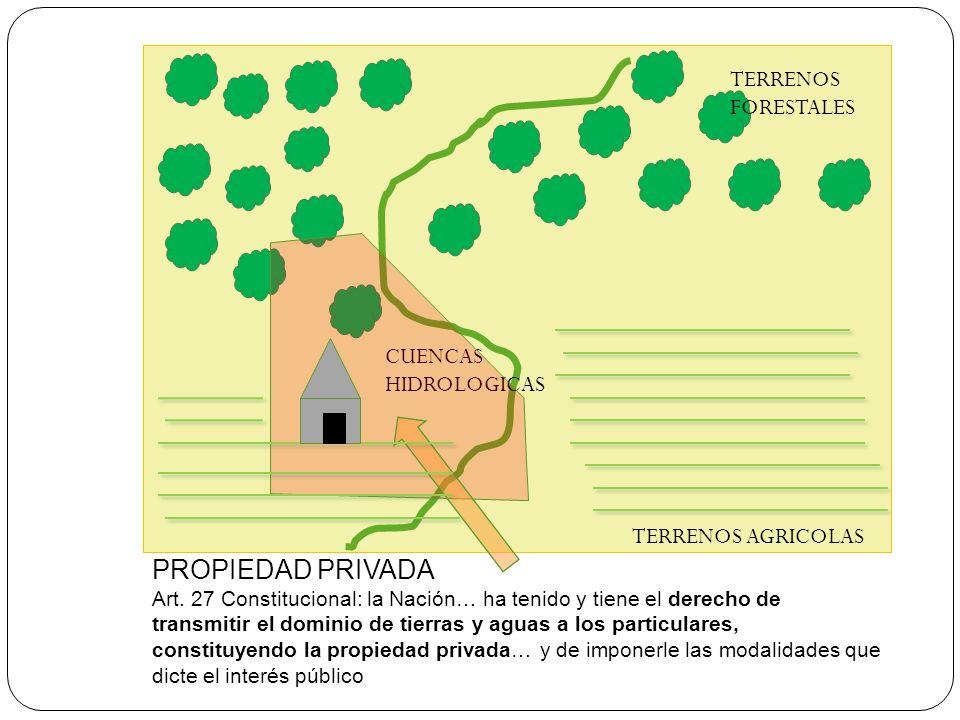 PROPIEDAD PRIVADA TERRENOS FORESTALES CUENCAS HIDROLOGICAS