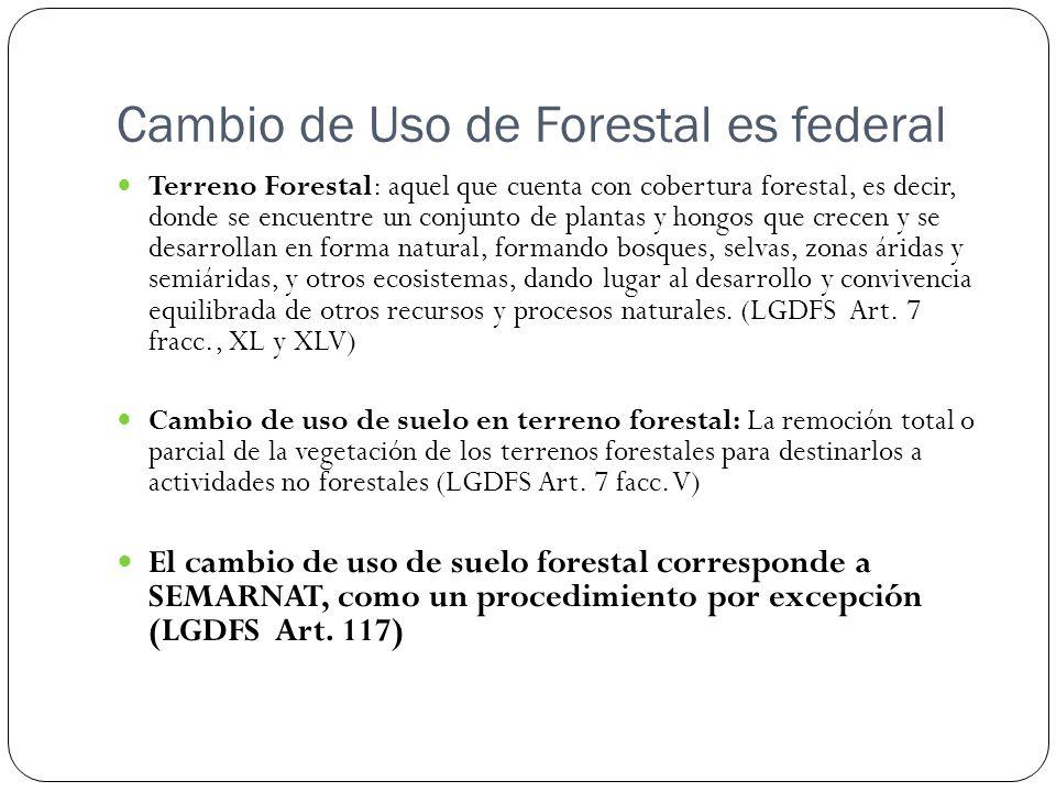 Cambio de Uso de Forestal es federal
