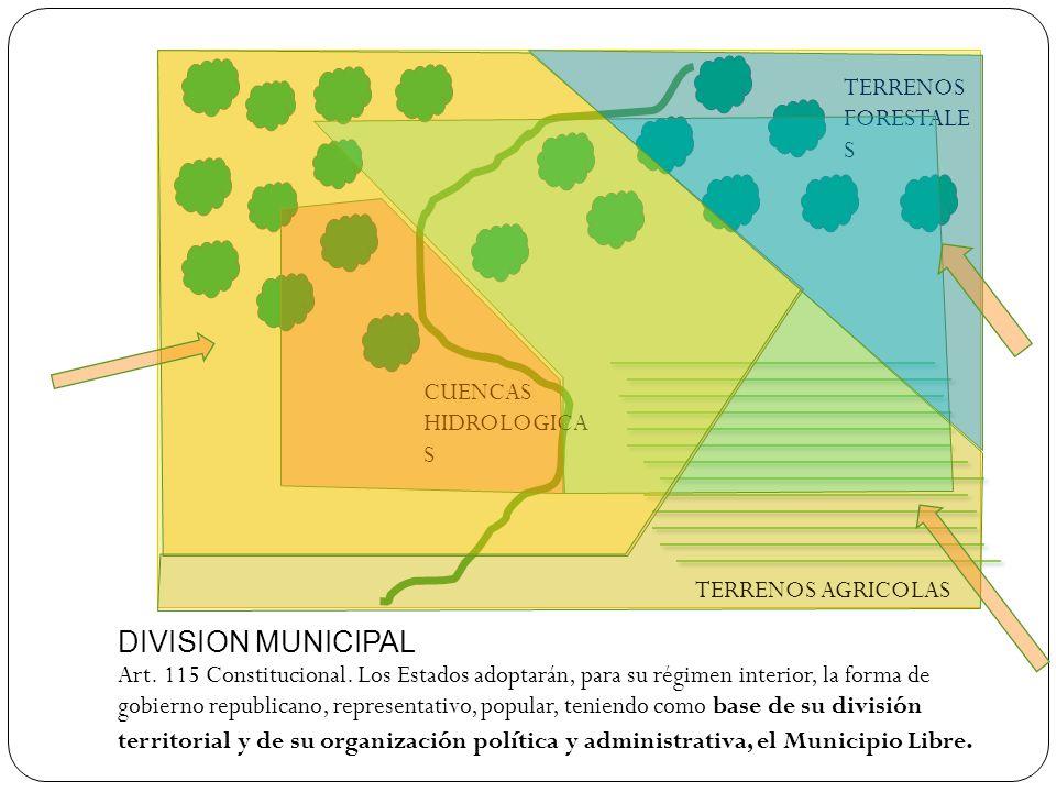 DIVISION MUNICIPAL TERRENOS FORESTALES CUENCAS HIDROLOGICAS