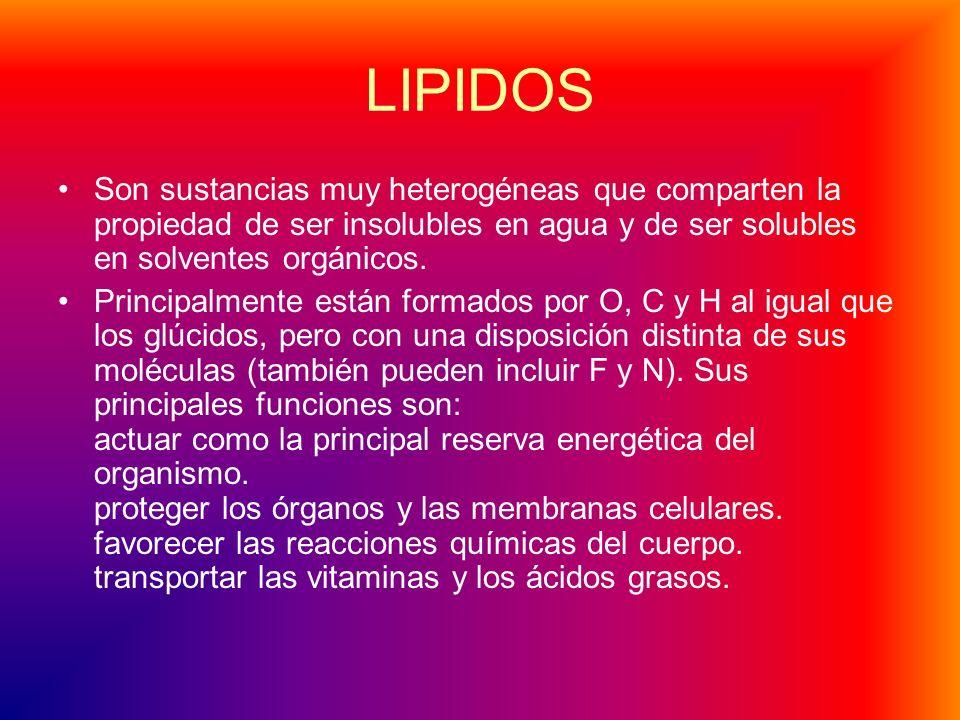 LIPIDOS Son sustancias muy heterogéneas que comparten la propiedad de ser insolubles en agua y de ser solubles en solventes orgánicos.
