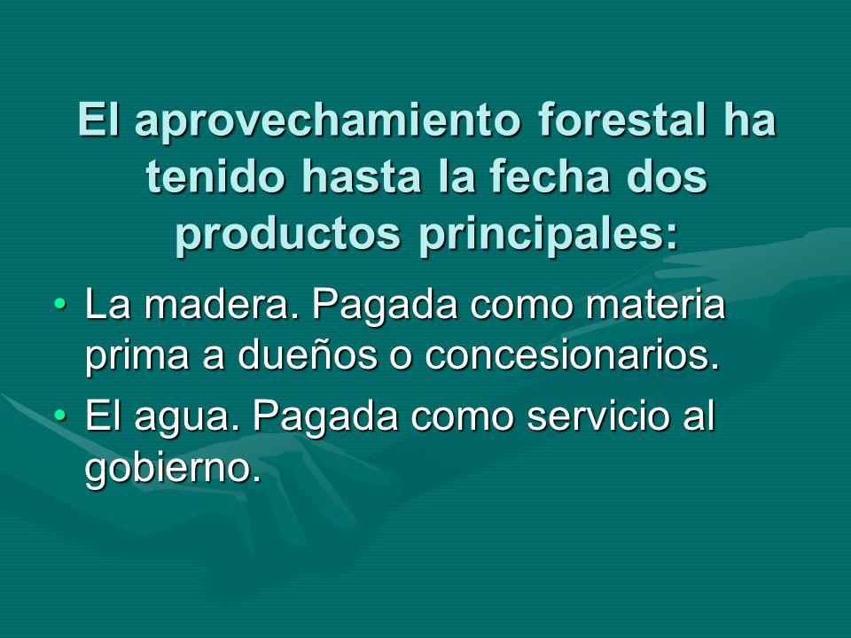 El aprovechamiento forestal ha tenido hasta la fecha dos productos principales: