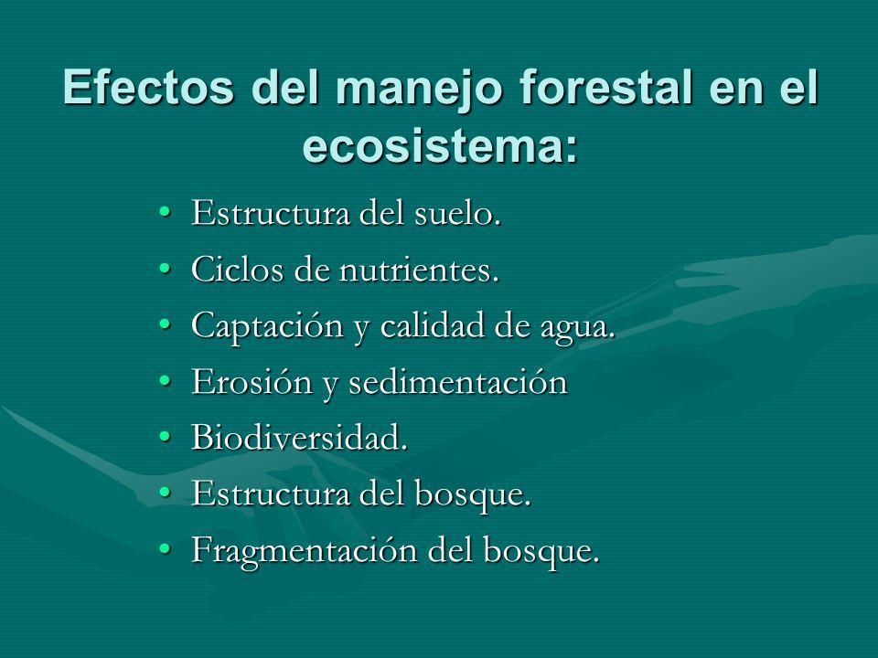 Efectos del manejo forestal en el ecosistema: