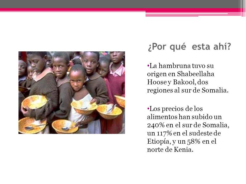 ¿Por qué esta ahí La hambruna tuvo su origen en Shabeellaha Hoose y Bakool, dos regiones al sur de Somalia.
