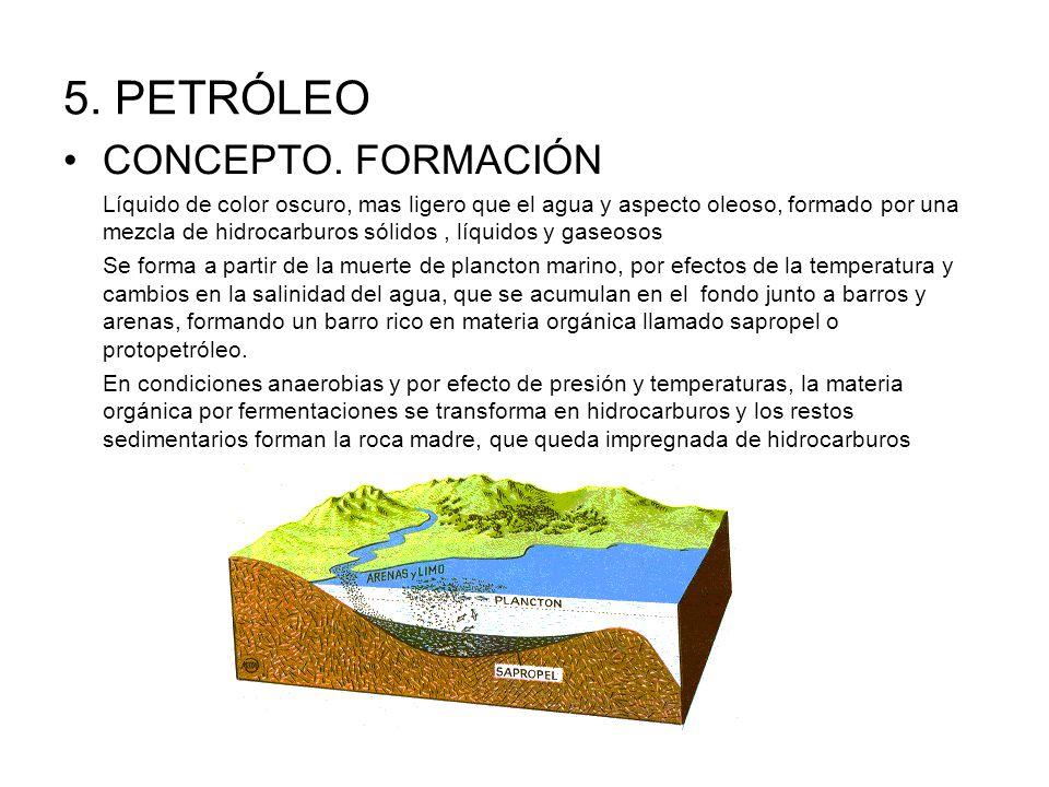 5. PETRÓLEO CONCEPTO. FORMACIÓN