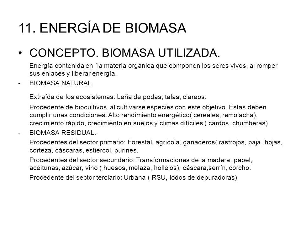 11. ENERGÍA DE BIOMASA CONCEPTO. BIOMASA UTILIZADA.