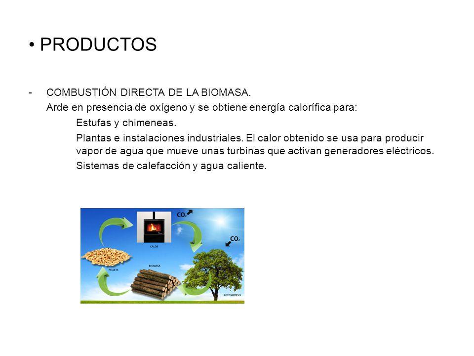 PRODUCTOS COMBUSTIÓN DIRECTA DE LA BIOMASA.