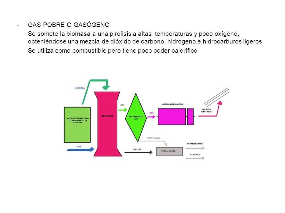 GAS POBRE O GASÓGENO