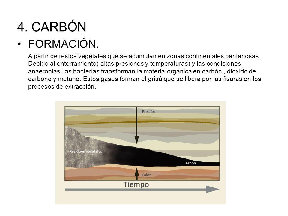 4. CARBÓN FORMACIÓN.