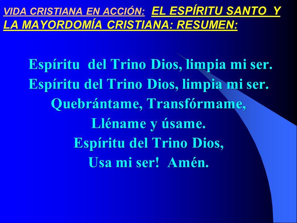 Espíritu del Trino Dios, limpia mi ser.
