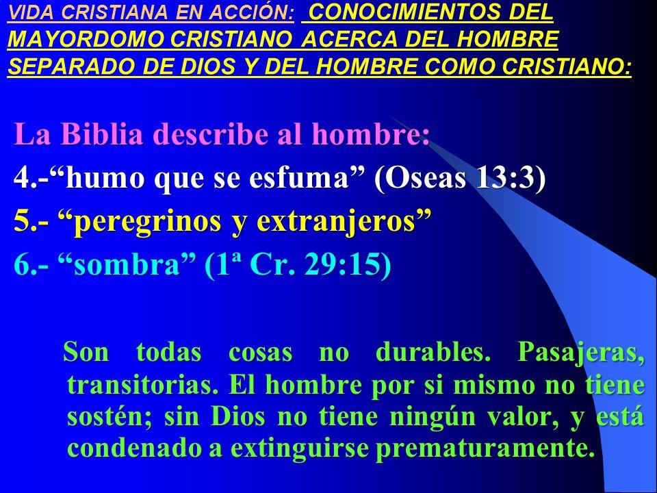 La Biblia describe al hombre: 4.- humo que se esfuma (Oseas 13:3)