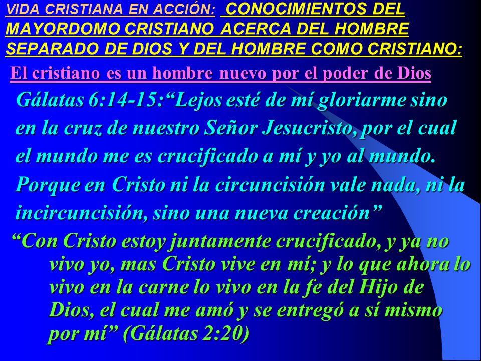 Gálatas 6:14-15: Lejos esté de mí gloriarme sino