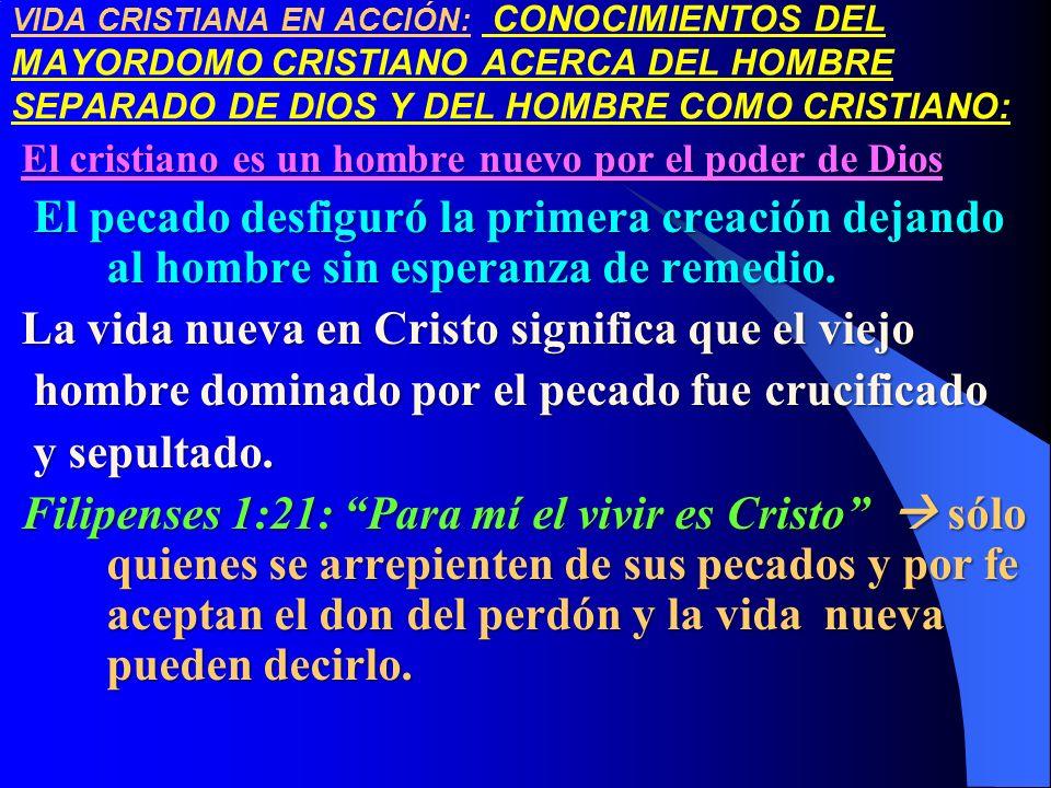 La vida nueva en Cristo significa que el viejo