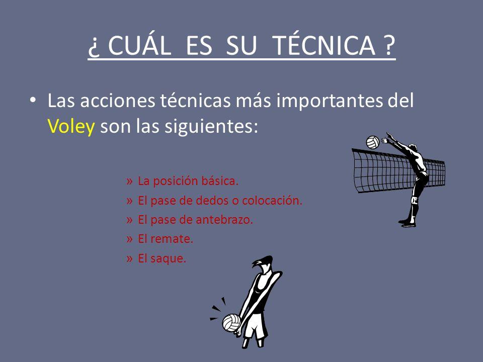 ¿ CUÁL ES SU TÉCNICA Las acciones técnicas más importantes del Voley son las siguientes: La posición básica.