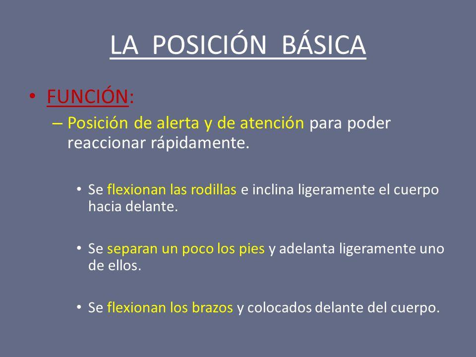LA POSICIÓN BÁSICA FUNCIÓN: