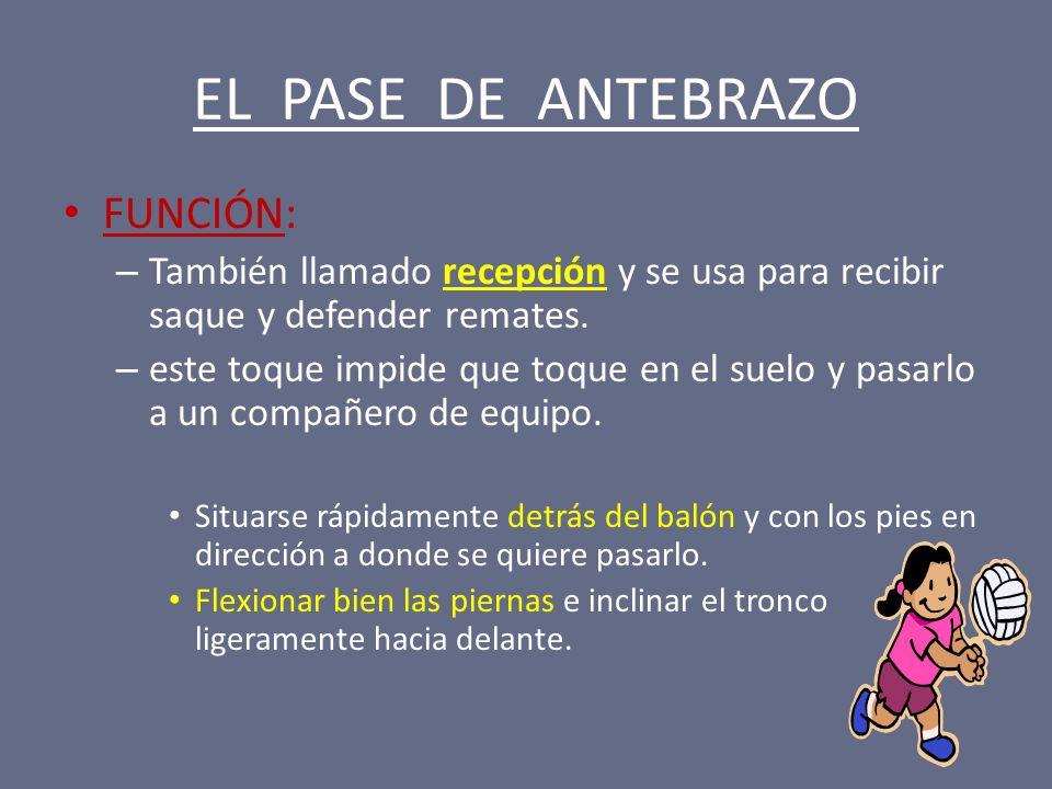 EL PASE DE ANTEBRAZO FUNCIÓN: