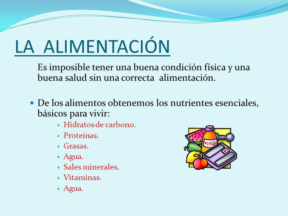 LA ALIMENTACIÓN Es imposible tener una buena condición física y una buena salud sin una correcta alimentación.
