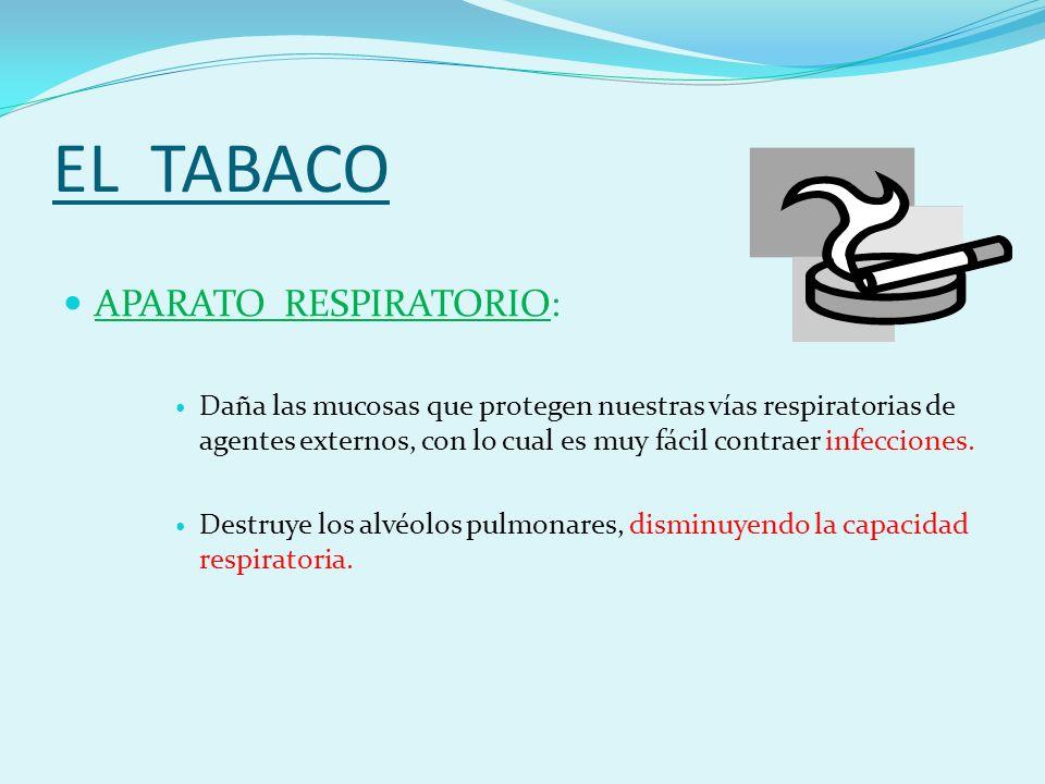 EL TABACO APARATO RESPIRATORIO: