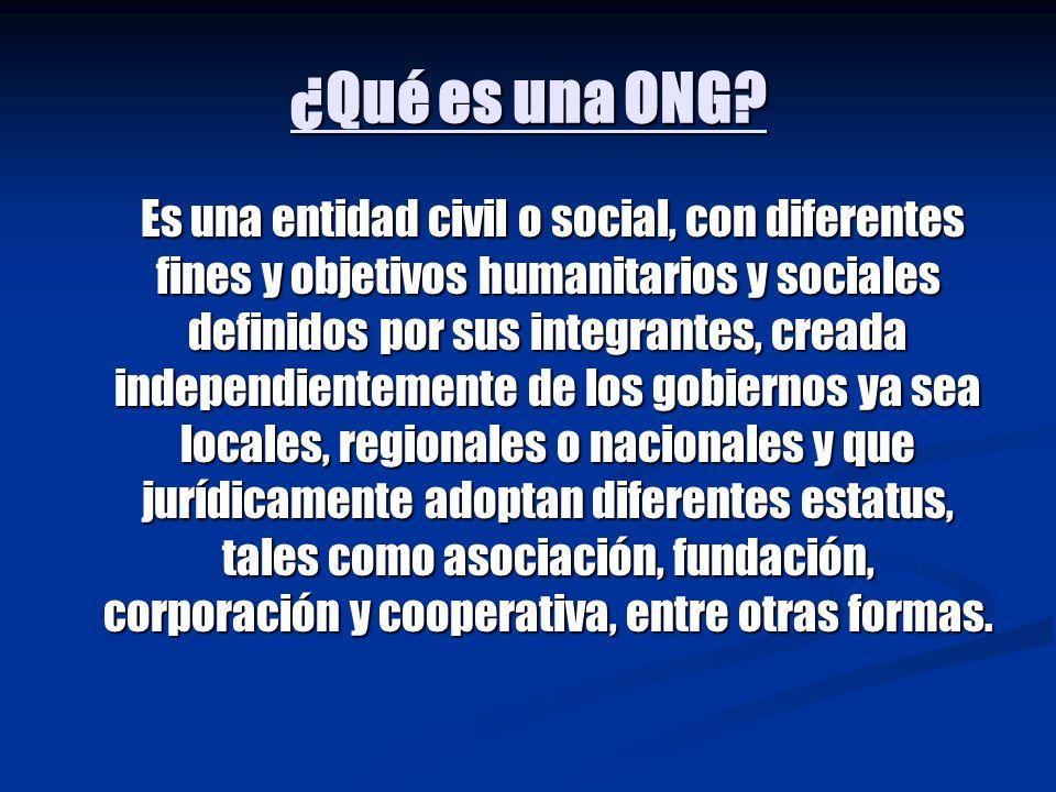 ¿Qué es una ONG
