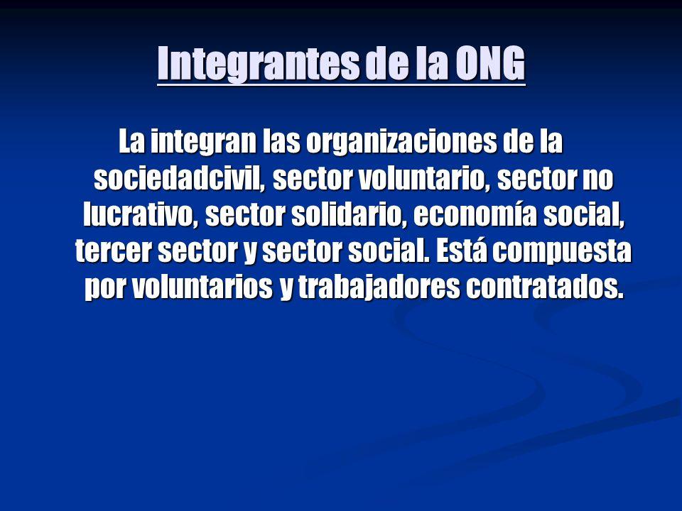 Integrantes de la ONG