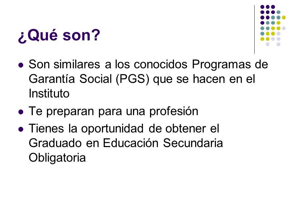 ¿Qué son Son similares a los conocidos Programas de Garantía Social (PGS) que se hacen en el Instituto.