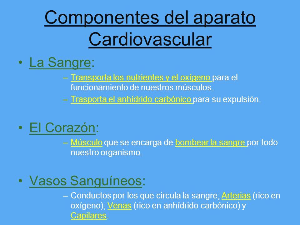 Componentes del aparato Cardiovascular