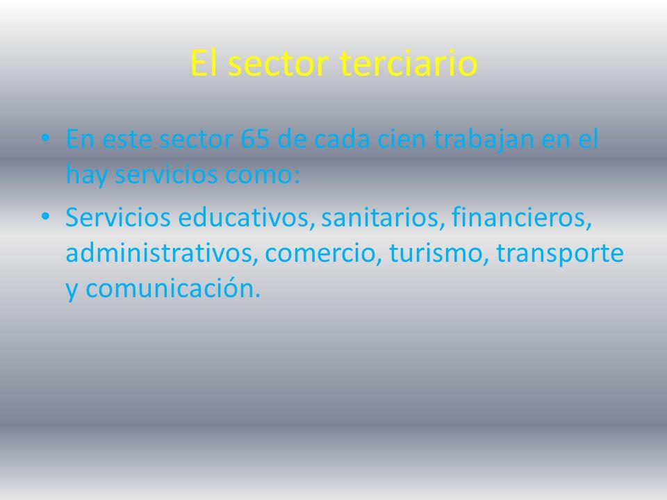 El sector terciario En este sector 65 de cada cien trabajan en el hay servicios como:
