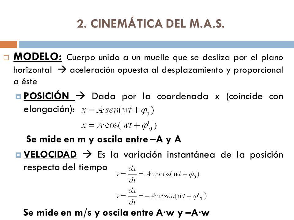 2. CINEMÁTICA DEL M.A.S.