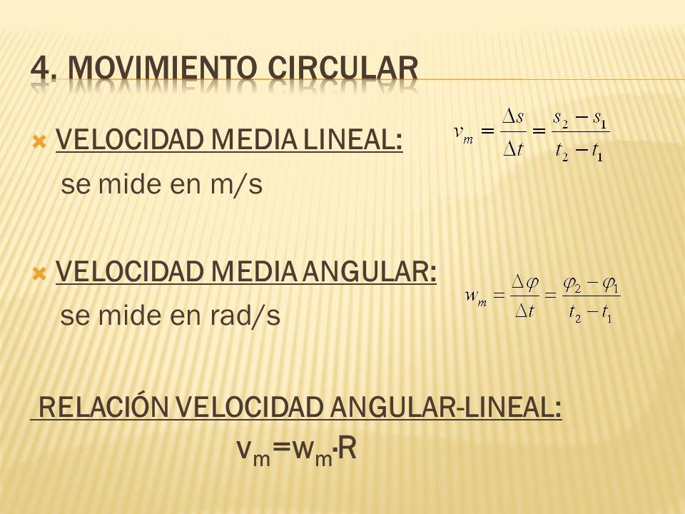 4. MOVIMIENTO CIRCULAR VELOCIDAD MEDIA LINEAL: se mide en m/s