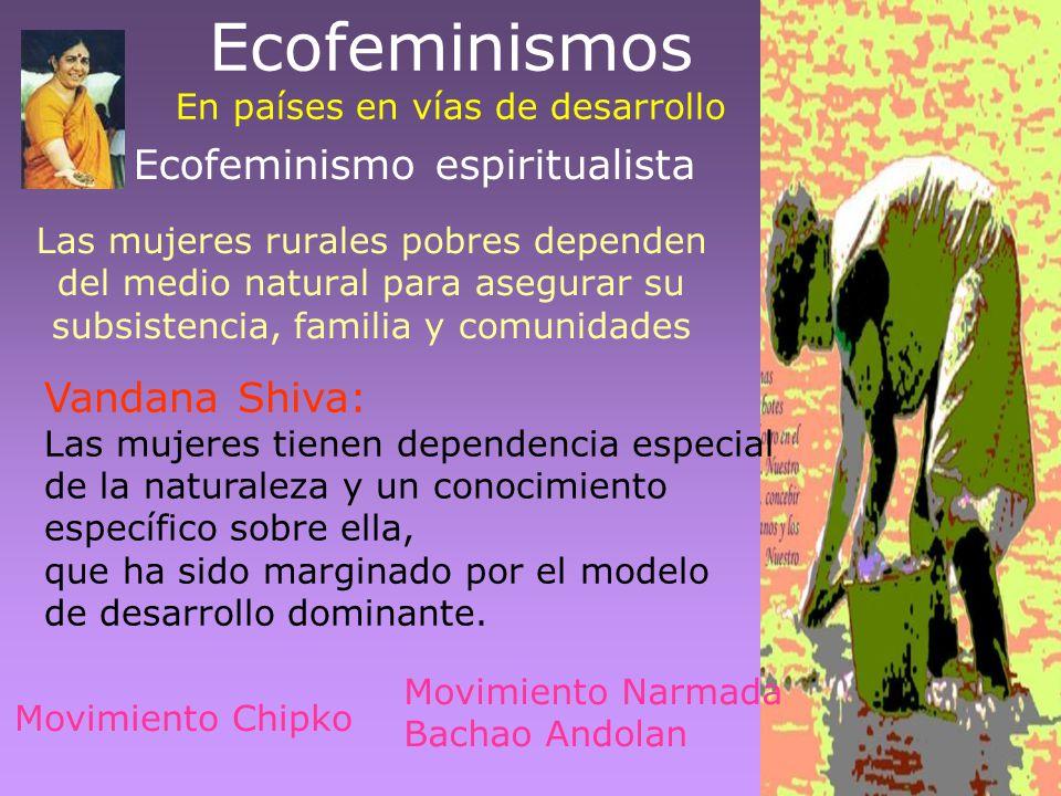 Ecofeminismos En países en vías de desarrollo
