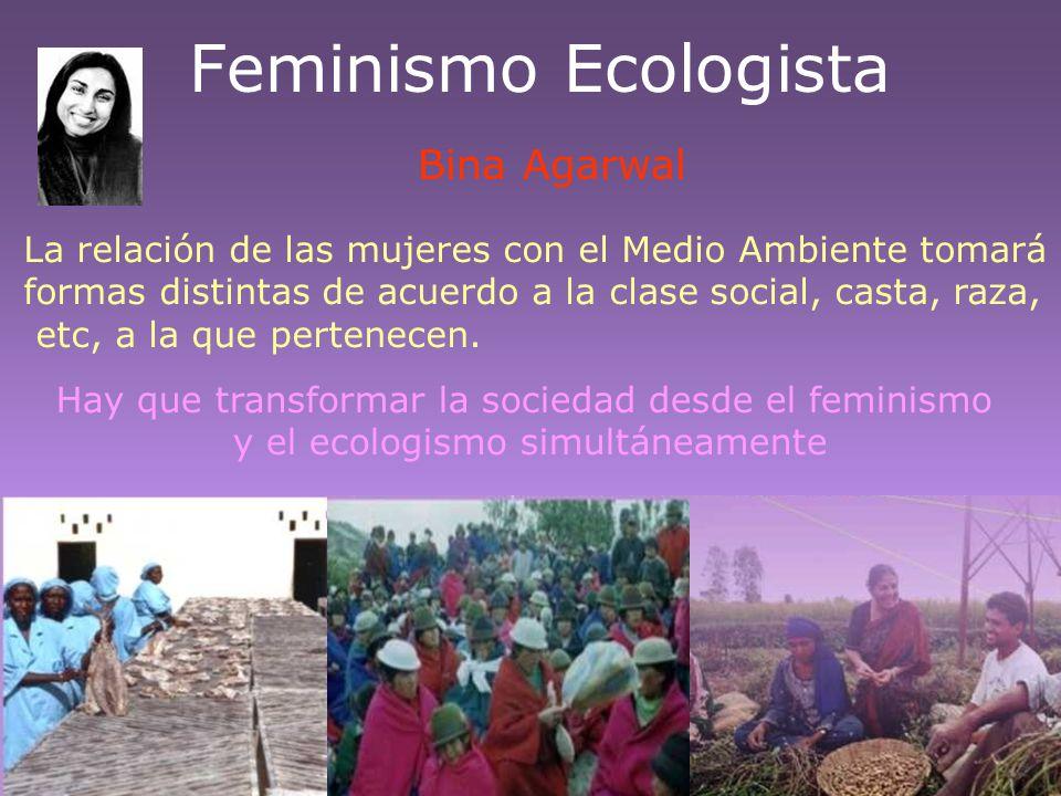Feminismo Ecologista Bina Agarwal