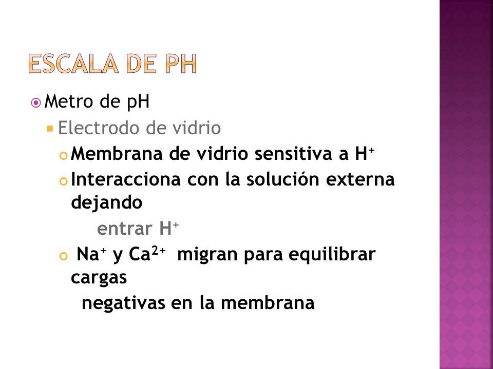 Escala de pH Metro de pH Electrodo de vidrio