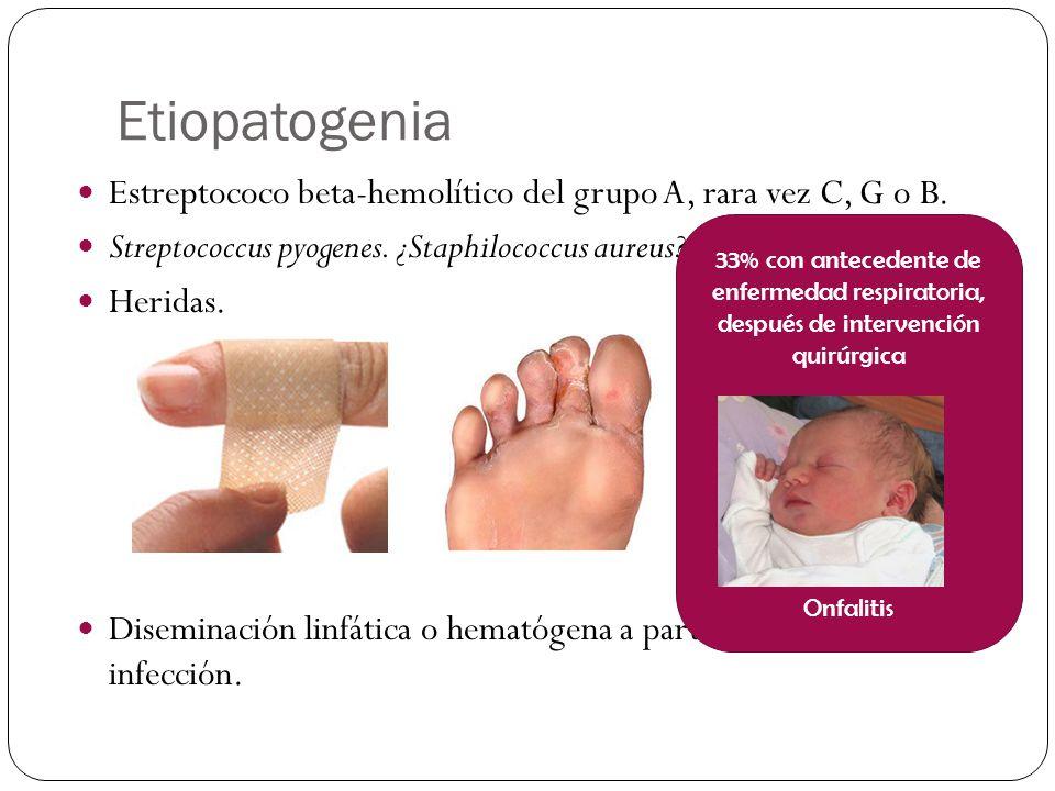 Etiopatogenia Estreptococo beta-hemolítico del grupo A, rara vez C, G o B. Streptococcus pyogenes. ¿Staphilococcus aureus .